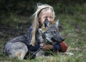 Парцаливка и сивия вълк